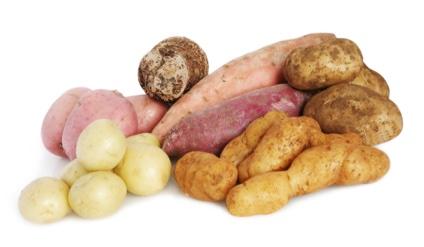 K vd Spijk aardappelen